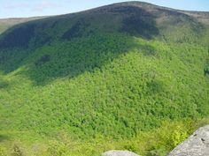 Mount Greylock in the Berkshires is Massachusetts' highest peak. This hike has the most fantastic views imaginable. Hike hear feels a lot like hiking in Maine or Alaska!