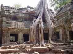 Cambodja, 2007