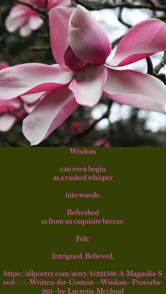 Eye Has Not Seen, Wisdom Quotes, Life Quotes, Another A, The Heart Of Man, Love Never Fails, Nature Quotes, Writing Inspiration, Life Skills