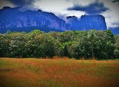 Tepuy Eco-Adventures   (Para mas información acerca de este tour clickea la foto).- (For more information about this tour click the photo).- :)