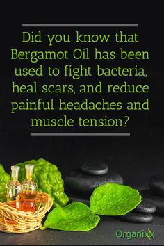 The Healing Wonders of Bergamot Oil: Did you know that Bergamot Oil has been used to fight bacteria, heal scars, and reduce painful headaches and muscle tension? For more tips & ideas on ways to use essential oils, please click through to find out now!