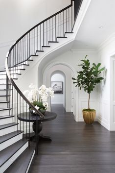 Spiral staircase, white millwork, arched doorway, curved stair, wood and white decor, traditional entry