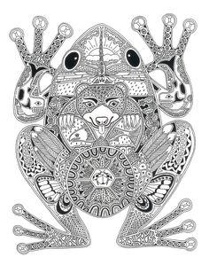 Design by Sue Coccia