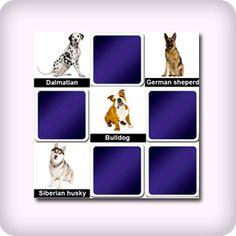 Dog breeds memory game for seniors, free online game for elderly. It's a great game for memory training. Memory Games For Seniors, Games For Elderly, Online Games For Kids, Dog Games, Animal Games, Best Pet Dogs, Flower Games, Dog Memorial, Flowers Online