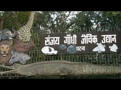 Photo of the week : Sanjay Gandhi Jaivik Udyan Patna Glass Green House, Zoological Garden, Family Picnic, Tourist Places, Photos Of The Week, Gandhi, Botanical Gardens, This Is Us, Places To Visit