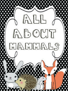 All About Mammals {Common Core aligned!}