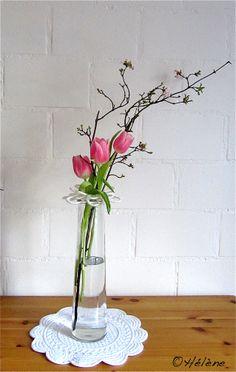 Flower Drawing Images, Wonderful Flowers, Floral Arrangements, Flower Arrangement, Flower Aesthetic, Flower Centerpieces, Flower Wallpaper, Ikebana, Flower Art