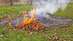 """Magyarországon széles körben elterjedt """"népbetegség"""" a kerti hulladékok és az avar égetése. Pumpkin, Outdoor, Outdoors, Pumpkins, Outdoor Games, Squash, The Great Outdoors"""