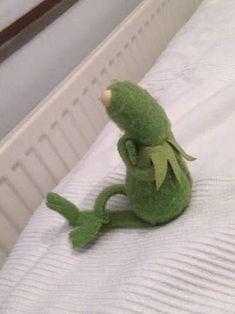 Blow me one last kiss, Kermit. Funny Kermit Memes, Cute Memes, Stupid Funny Memes, Elmo, Tea Lizard, Sapo Kermit, Sapo Meme, Frog Meme, Miss Piggy