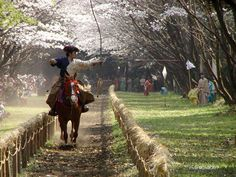 """Horseback archery"" I need to try this"