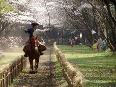 """Horseback archery"" I need to try this"