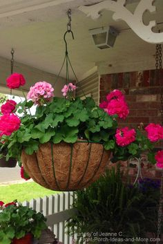 Pictures of Porches from Readers Geranium Planters, Geraniums Garden, Potted Geraniums, Garden Pots, Red Geraniums, Hanging Plants Outdoor, Plants For Hanging Baskets, Hanging Flower Baskets, Hanging Planters