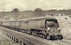 35029 Ellerman Lines Diesel Locomotive, Steam Locomotive, Southern Trains, Grey Wallpaper Iphone, Southern Railways, Merchant Navy, Steam Railway, Bullen, Train Art