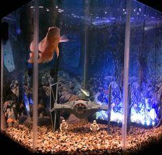 Star wars aquarium geeking out pinterest inspiration for Star wars fish tank decor