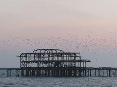 Brighton Photo Diary | West Pier & Brighton Pier