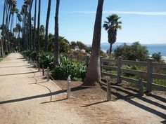 Palisades Park and friendly conversations with other dog owners
