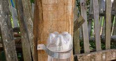 Como reaproveitar materiais recicláveis e transformar lixo em luxo através do artesanato. Como reciclar materiais ecologicamente. Ladder Decor, Pets, Nature, Diy, Home Decor, Chicken Coop Decor, Toys For Cats, String Art, Letters With Flowers