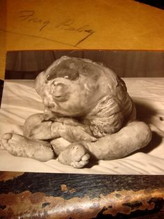 Click to read the story of the human frog baby born in 1947.  Made me sad that they exploited the poor little thing before it died.  It needed to be cuddled and loved after it was born..not held up for the camera.