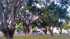 Praça do Derby - centro do Recife