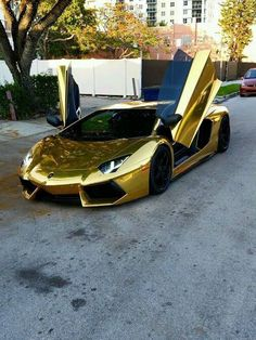 Chrome gold lambo = life