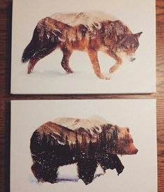 Amazing drawing! Bear & Wolf w/ Trees & Snowy Mountains Inside Them!