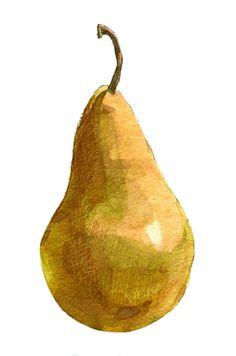 Pear Watercolor Fruit