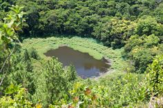 Trou aux Cerfs, Curepipe, Mauritius - A volcanic crater where you also get 180 degree views of the beautiful Island Mauritius Travel, Island Nations, Beautiful Islands, International Recipes, Seychelles, Travelling, Landscapes, Journey, Ocean