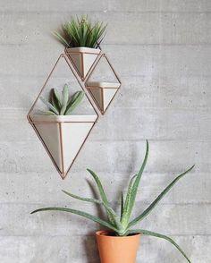 geometric Trigg vessels designed by Moe Takemura for Umbra