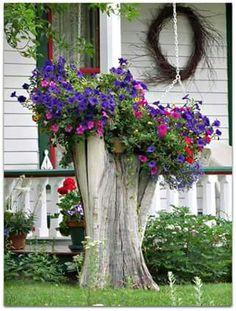 Tree trunk stump turned flower planter.