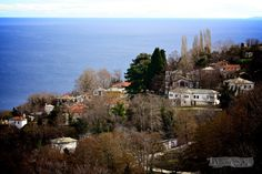 Mouresi, Pelion Greece