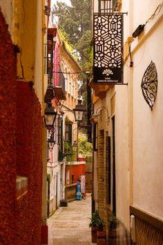 """""""Passeggiando per il centro di Siviglia"""". (Siviglia). 1° riScatto urbano di Erian Andre. Saranno conteggiati i """"RT"""" al seguente tweet: https://twitter.com/Erian_A/status/486845989408350209"""