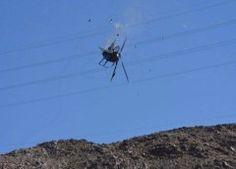 Un helicóptero se desplomó al intentar un rescate  en Baja California