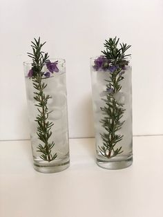 Gin and tonic with large rosemary stick - with flowers if available Gin & Tonic Cocktails, Gin And Tonic, Craft Gin, Gin Lovers, Flowers, Crafts, Manualidades, Florals, Handmade Crafts