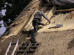 Roofing Contractors Services Located Near You in Chesapeake Norfolk Suffolk VA Roof Leak Repair, Residential Roofing, Thatched Roof, Roofing Contractors, Hampton Roads, Small Places, Flat Roof, English Cottages, Tiny Cottages