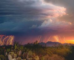 """The Wrong Party"" Lightning Photography in Lordsburg, New Mexico by Jenny K, Thomas Photography. www.jennykthomas.smugmug.com Purchase Original Fine Art Landscape Photography 