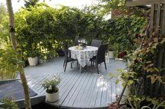 Pyöreä patio kätkeytyy katseilta hienon köynnösseinämän taakse. - Climbers create a sense of seclusion to a round patio. http://www.viherpiha.fi/pihasuunnittelu/nautiskelevaa-puutarhapuuhailua