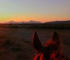 Salt Lake Stables holiday horse riding on Kos Island,Greece
