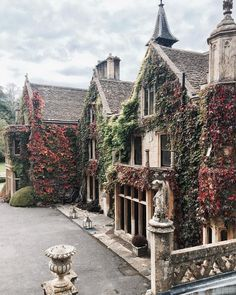 In Chorus the villas just spring up with 100-year-old ivy attached, fascinating really
