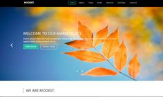 Check out Modest. Simple Business Landing Page @bootstrapstage
