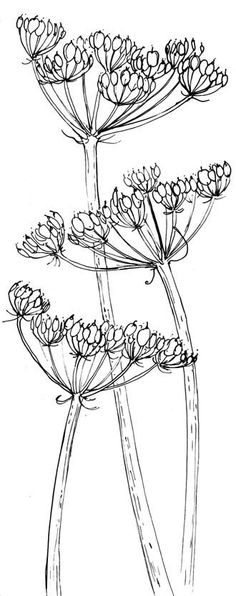 Ideas For Flowers Pattern Drawing Plant Illustration Botanical Drawings, Plant Sketches, Sketch Book, Art Drawings, Drawings, Linocut, Doodle Art, Flower Drawing, Art Inspiration