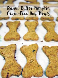Easy homemade peanut butter pumpkin grain-free dog treats – Famous Last Words Dog Treats Grain Free, Grain Free Dog Food, Diy Dog Treats, Healthy Dog Treats, Pumpkin Dog Treat Recipe Grain Free, Dog Cake Recipes, Dog Biscuit Recipes, Dog Treat Recipes, Dog Food Recipes