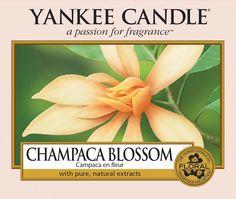 Champaca Blossom - Yankee Candle