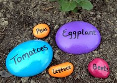 Easy homemade garden / plant markers using stones.  Longer lasting, re-useable, and adds pops of color to your garden!
