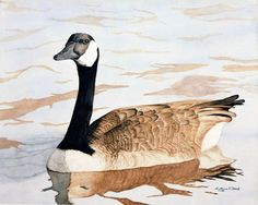 Watercolor Print Giclee  Goose-Gift For Him-Wall by Studioart88
