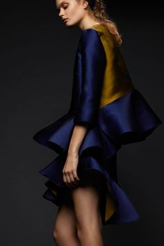 pre-fall-2015/preen-by-thornton-bregazzi/collection