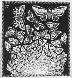 Maurits Cornelis Escher - (1898-1972) Hilversum. Nederlandse kunstenaar bekend geworden door zijn houtsneden, houtgravures en lithografieen, waarin hij vaak speelde met wiskundige principes. Zijn meetkundige patronen zijn zeer herkenbaar en vaak te vinden in zwart/wit prints. Escher is verantwoordelijk voor verschillende wiskundige ontdekkingen.Vanaf 1960 wordt grafische werk gebruikt in wetenschappelijke (leer)boeken.Werk: butterfly-van organisch naar grafisch, dat vind ik sterk aan zijn…