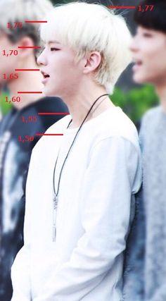 Height Chart: Hoshi