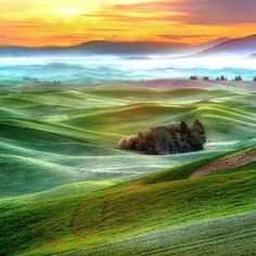 #nature — Photos -- National Geographic Your Shot