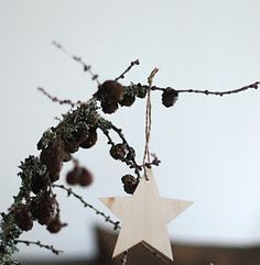 Place Cards, Christmas Stars, Place Card Holders, Gray