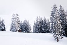 Landscape Pictures, Snow, Outdoor, Passion, Outdoors, Scenery Photography, The Great Outdoors, Landscape Photos, Eyes